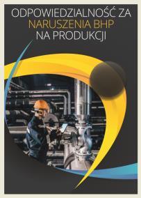 Odpowiedzialność za naruszenia BHP na produkcji_opis szkolenia